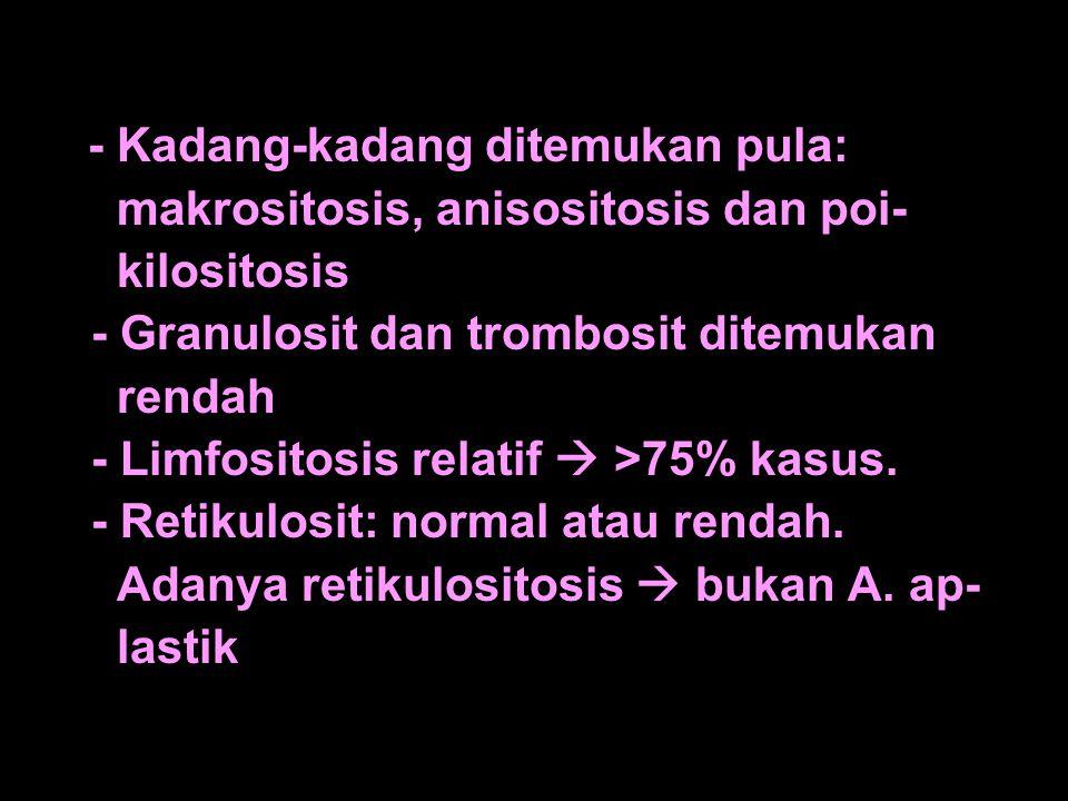 makrositosis, anisositosis dan poi- kilositosis