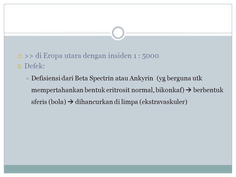>> di Eropa utara dengan insiden 1 : 5000 Defek: