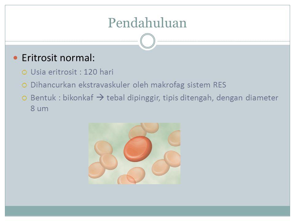 Pendahuluan Eritrosit normal: Usia eritrosit : 120 hari
