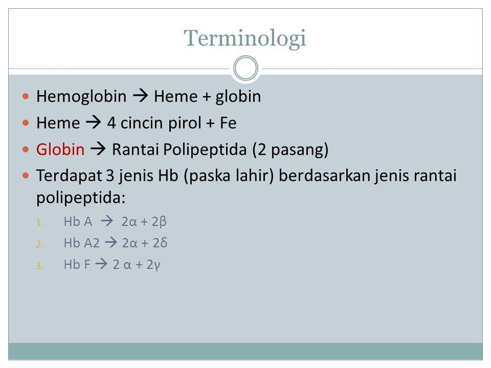 Terminologi Hemoglobin  Heme + globin Heme  4 cincin pirol + Fe