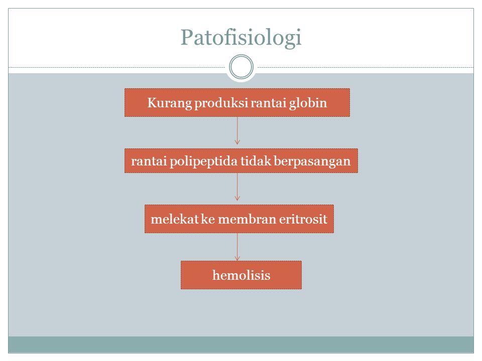 Patofisiologi Kurang produksi rantai globin