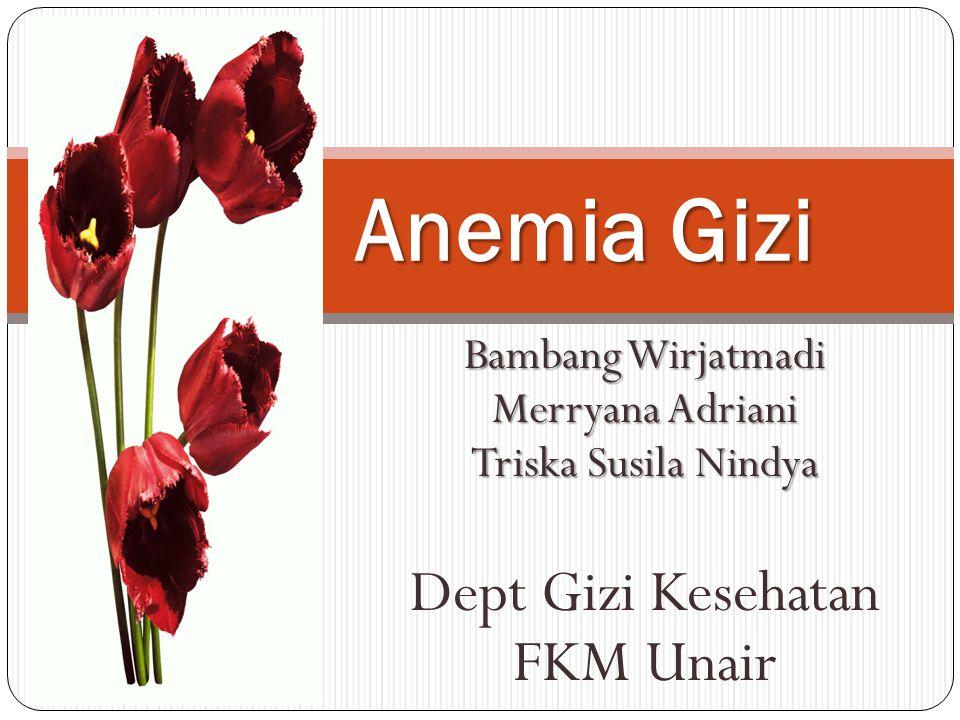 Anemia Gizi Dept Gizi Kesehatan FKM Unair Bambang Wirjatmadi