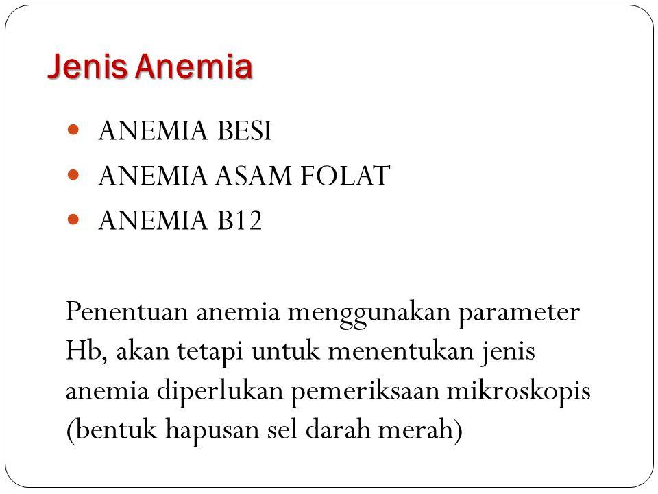 Jenis Anemia ANEMIA BESI ANEMIA ASAM FOLAT ANEMIA B12