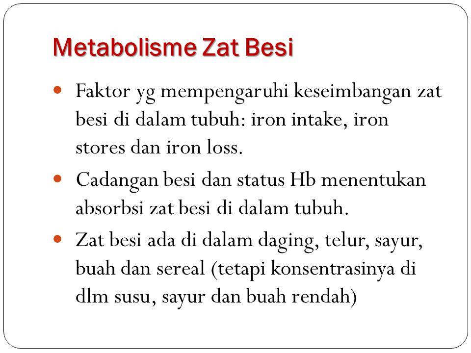 Metabolisme Zat Besi Faktor yg mempengaruhi keseimbangan zat besi di dalam tubuh: iron intake, iron stores dan iron loss.