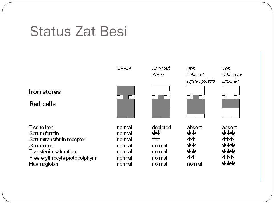 Status Zat Besi