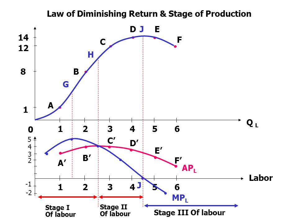 Law of Diminishing Return & Stage of Production
