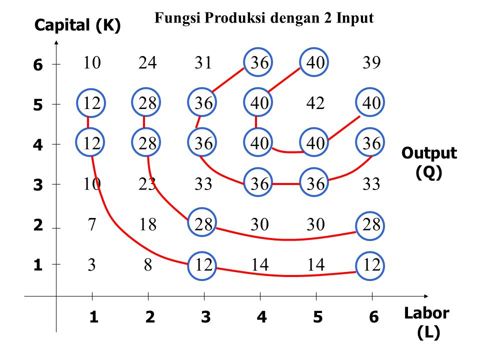 Fungsi Produksi dengan 2 Input