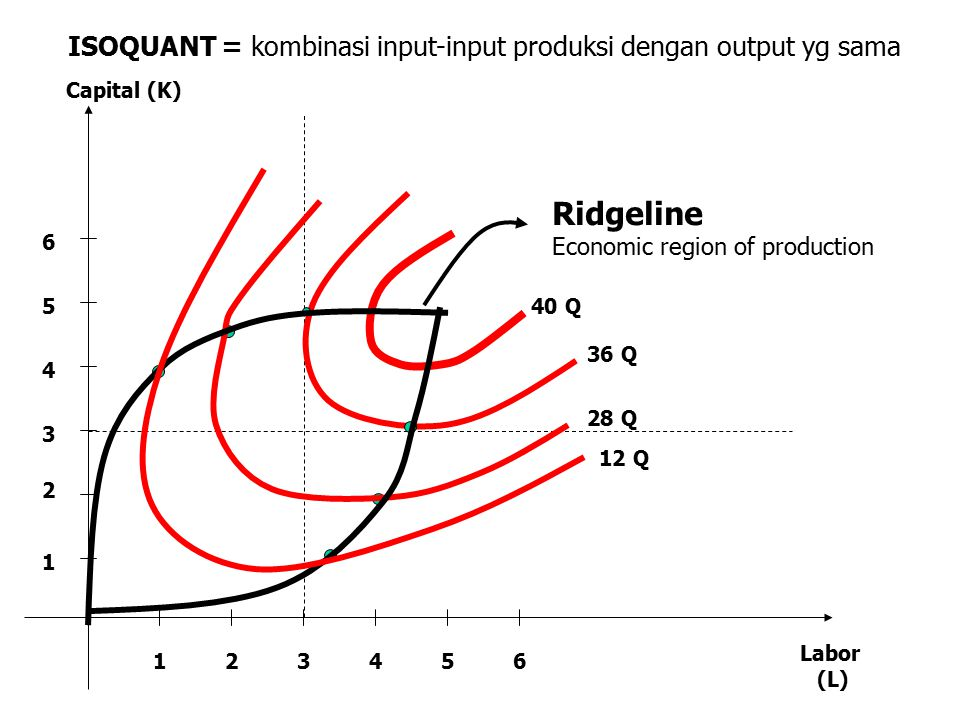 ISOQUANT = kombinasi input-input produksi dengan output yg sama