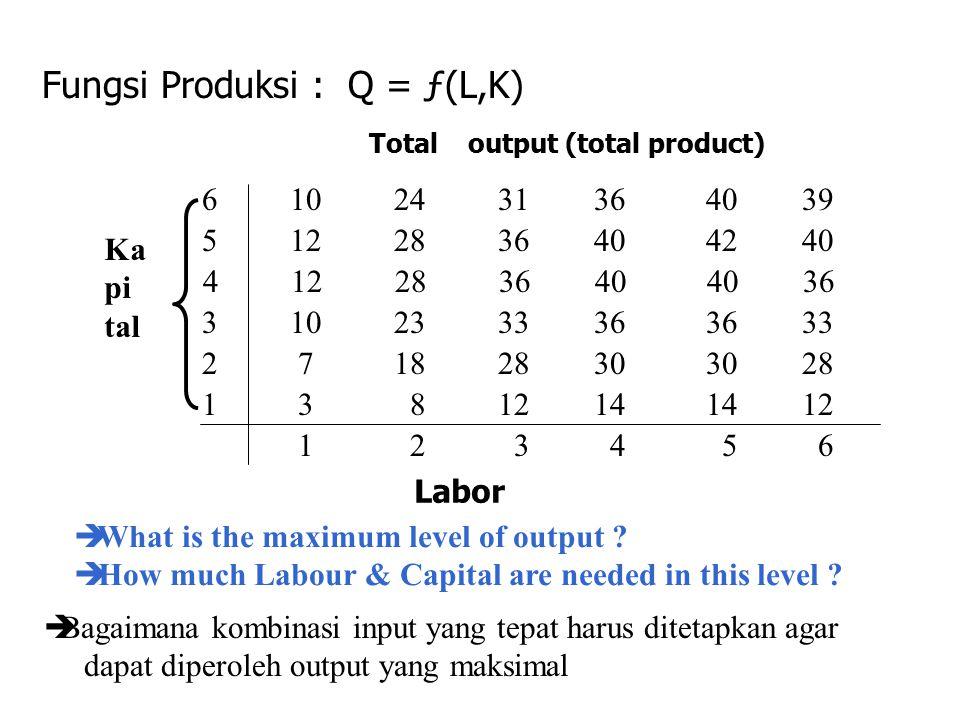 Fungsi Produksi : Q = ƒ(L,K)