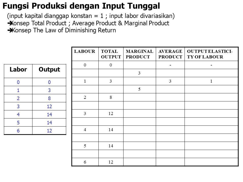Fungsi Produksi dengan Input Tunggal