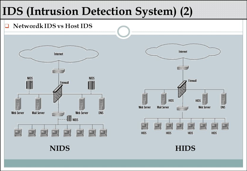 IDS (Intrusion Detection System) (2)