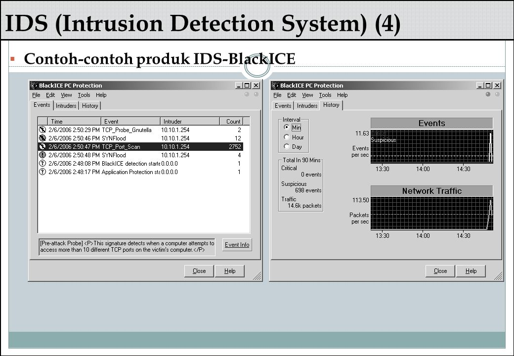 IDS (Intrusion Detection System) (4)