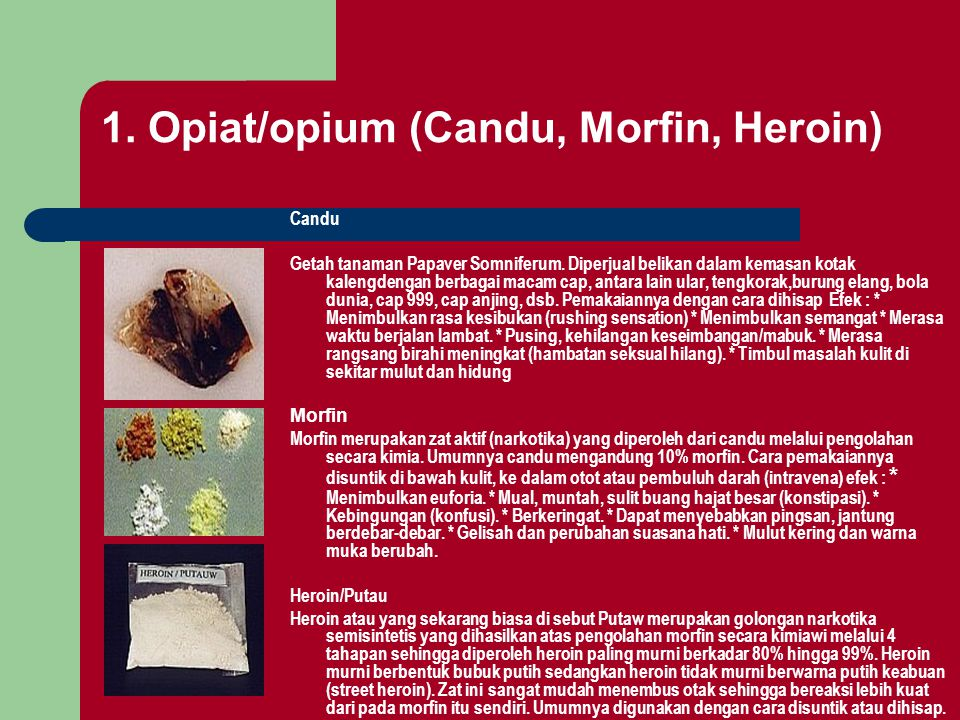 1. Opiat/opium (Candu, Morfin, Heroin)