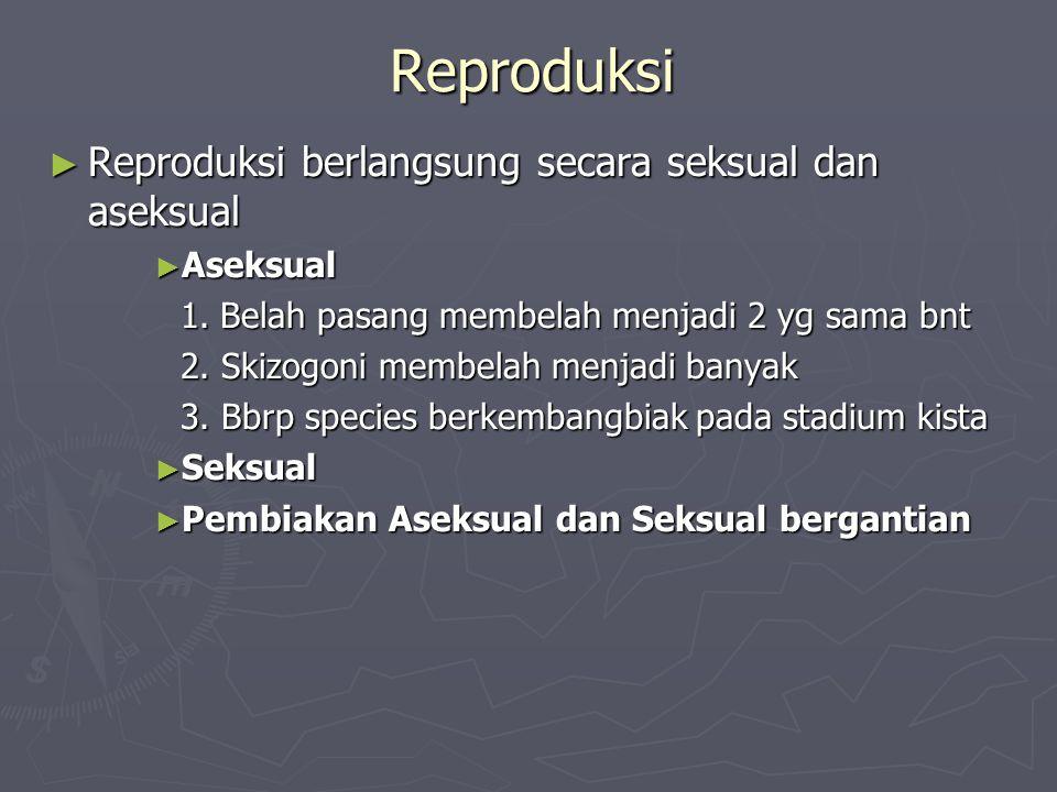 Reproduksi Reproduksi berlangsung secara seksual dan aseksual Aseksual