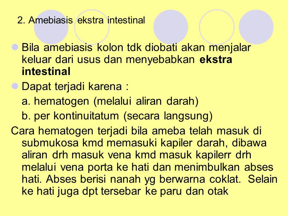 2. Amebiasis ekstra intestinal