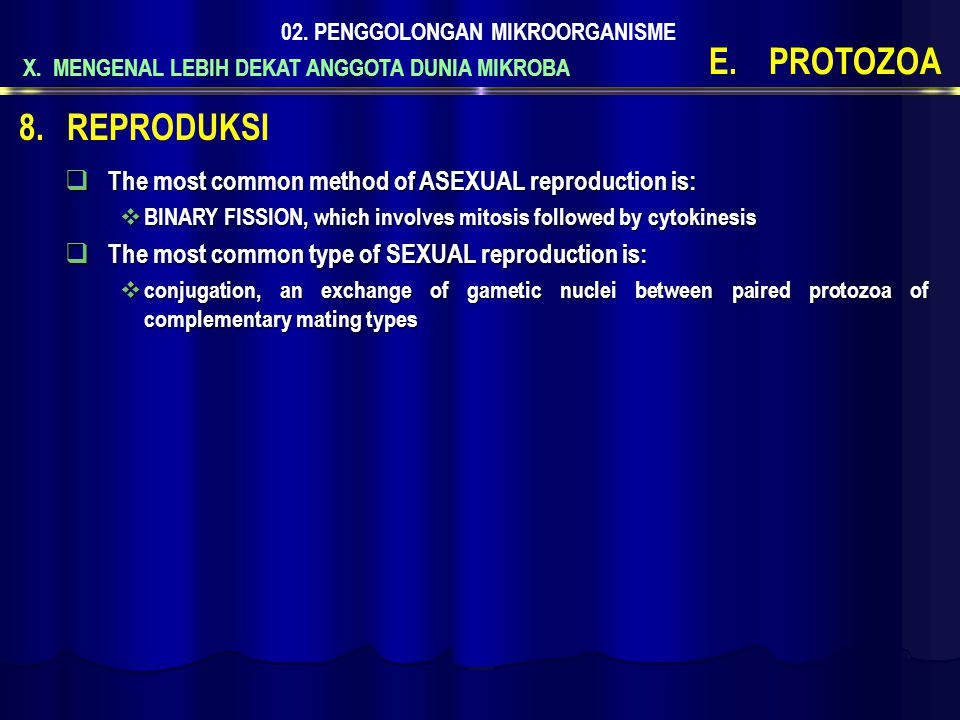 PROTOZOA REPRODUKSI The most common method of ASEXUAL reproduction is: