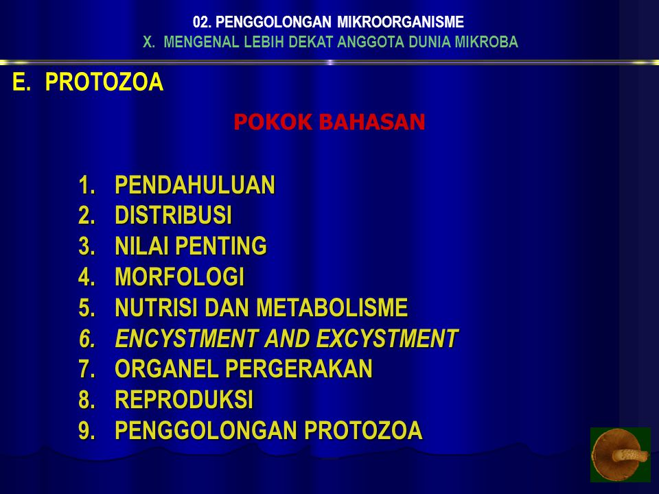 NUTRISI DAN METABOLISME ENCYSTMENT AND EXCYSTMENT ORGANEL PERGERAKAN