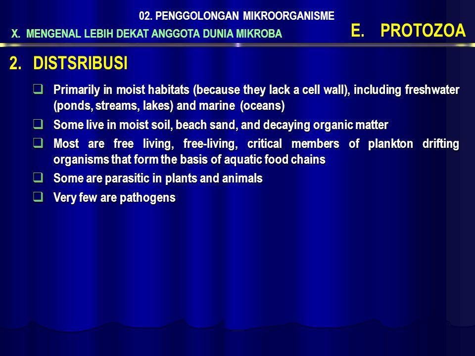 02. PENGGOLONGAN MIKROORGANISME