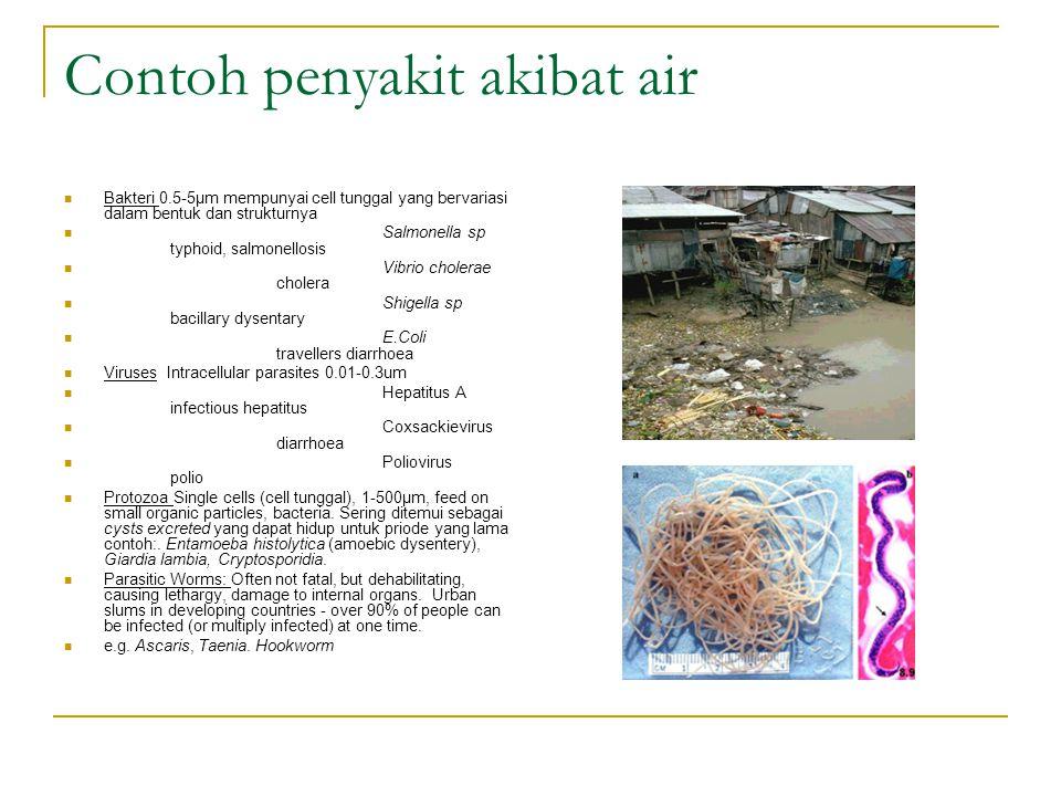 Contoh penyakit akibat air