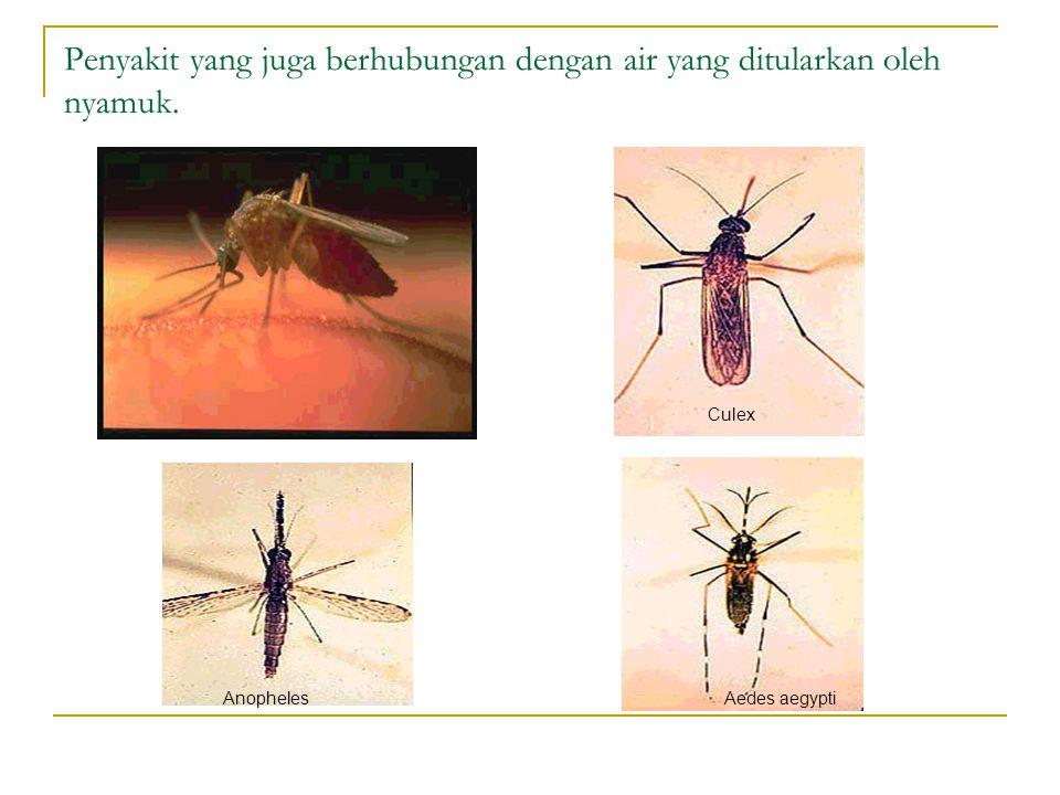 Penyakit yang juga berhubungan dengan air yang ditularkan oleh nyamuk.