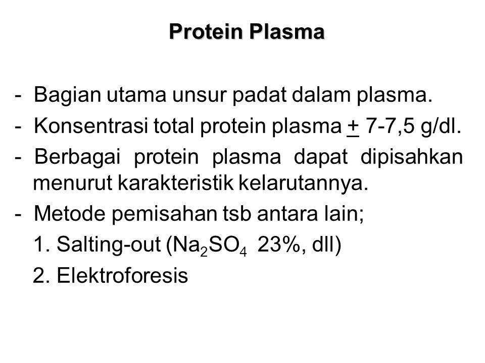 Protein Plasma - Bagian utama unsur padat dalam plasma. - Konsentrasi total protein plasma + 7-7,5 g/dl.