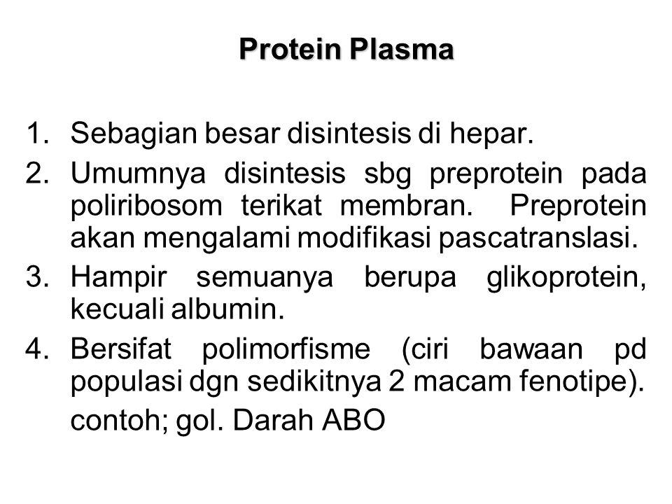 Protein Plasma Sebagian besar disintesis di hepar.