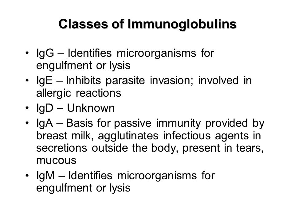Classes of Immunoglobulins