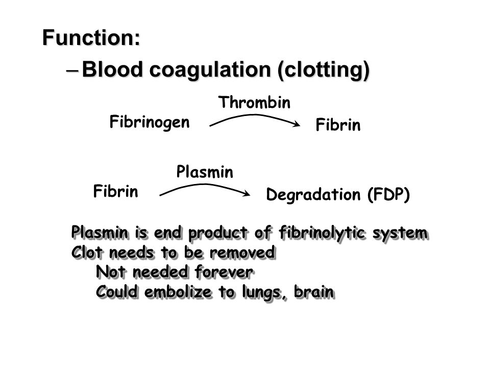 Blood coagulation (clotting)
