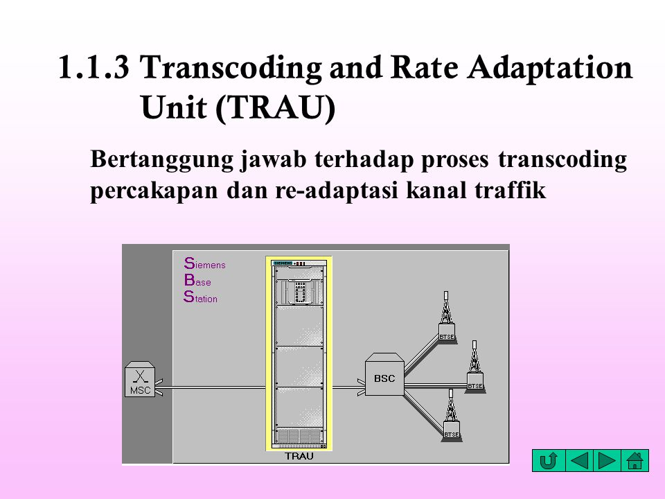 1.1.3 Transcoding and Rate Adaptation Unit (TRAU)