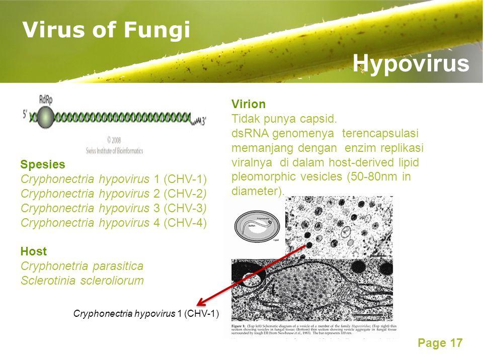 Hypovirus Virus of Fungi Virion Tidak punya capsid.