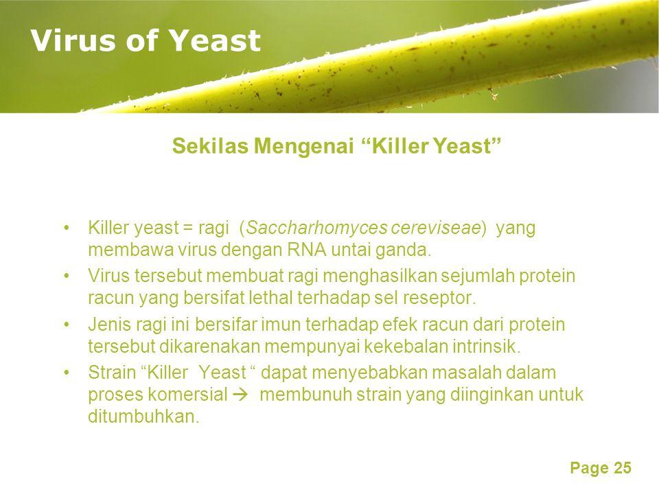Sekilas Mengenai Killer Yeast
