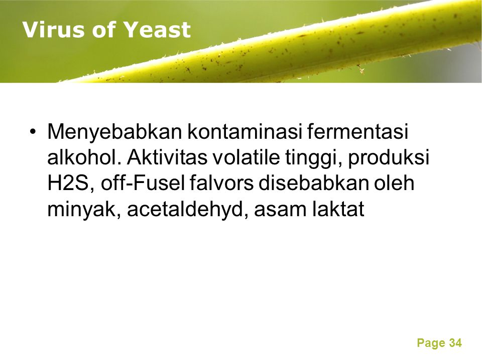 Virus of Yeast
