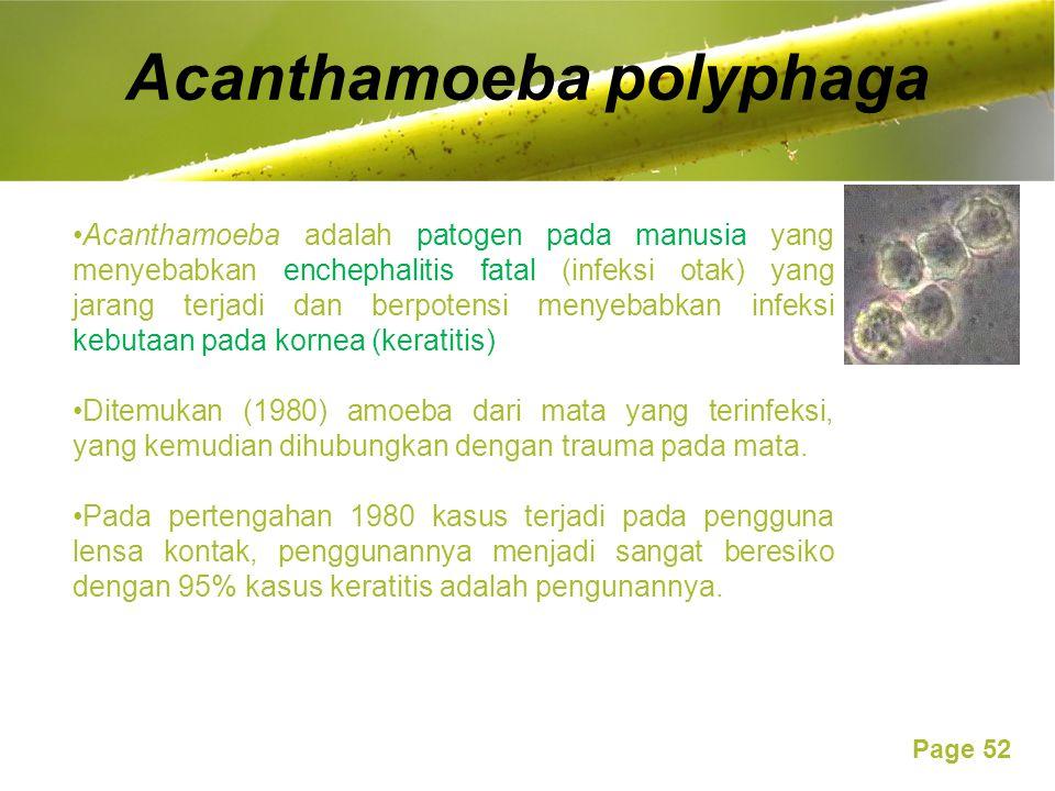 Acanthamoeba polyphaga