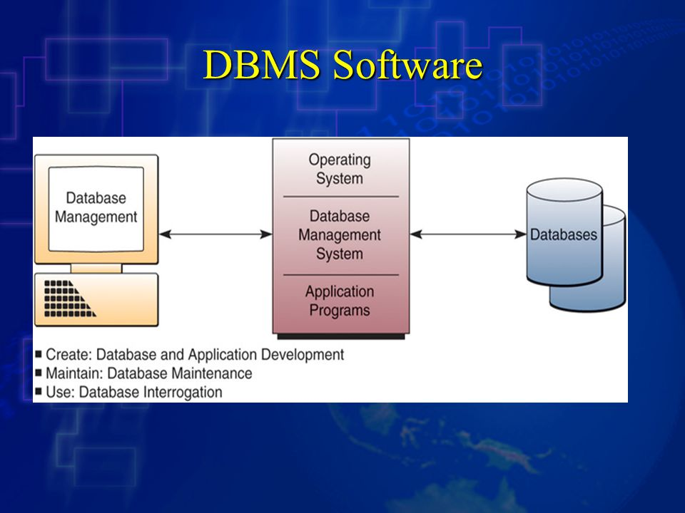 DBMS Software