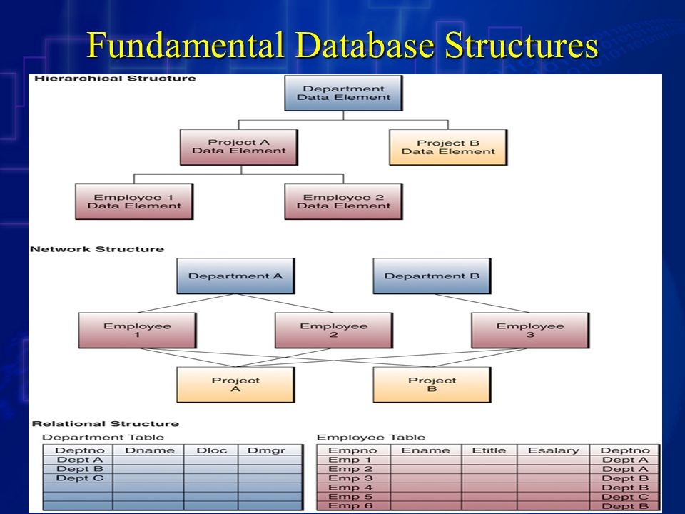 Fundamental Database Structures