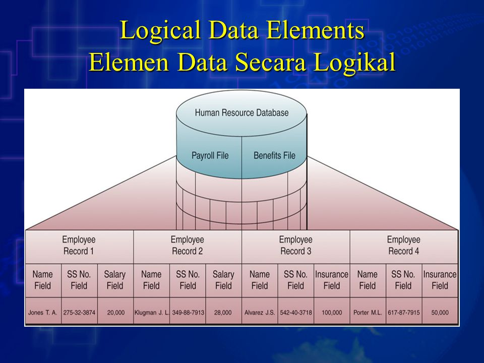 Logical Data Elements Elemen Data Secara Logikal