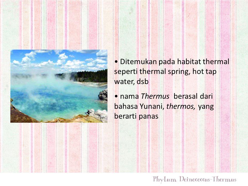 Ditemukan pada habitat thermal seperti thermal spring, hot tap water, dsb