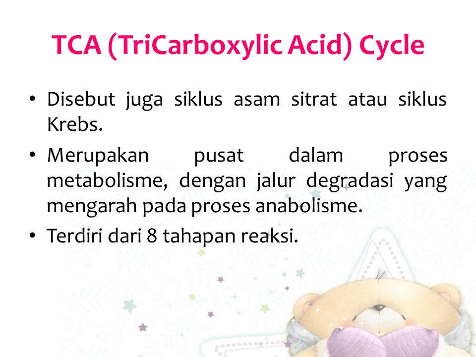 TCA (TriCarboxylic Acid) Cycle