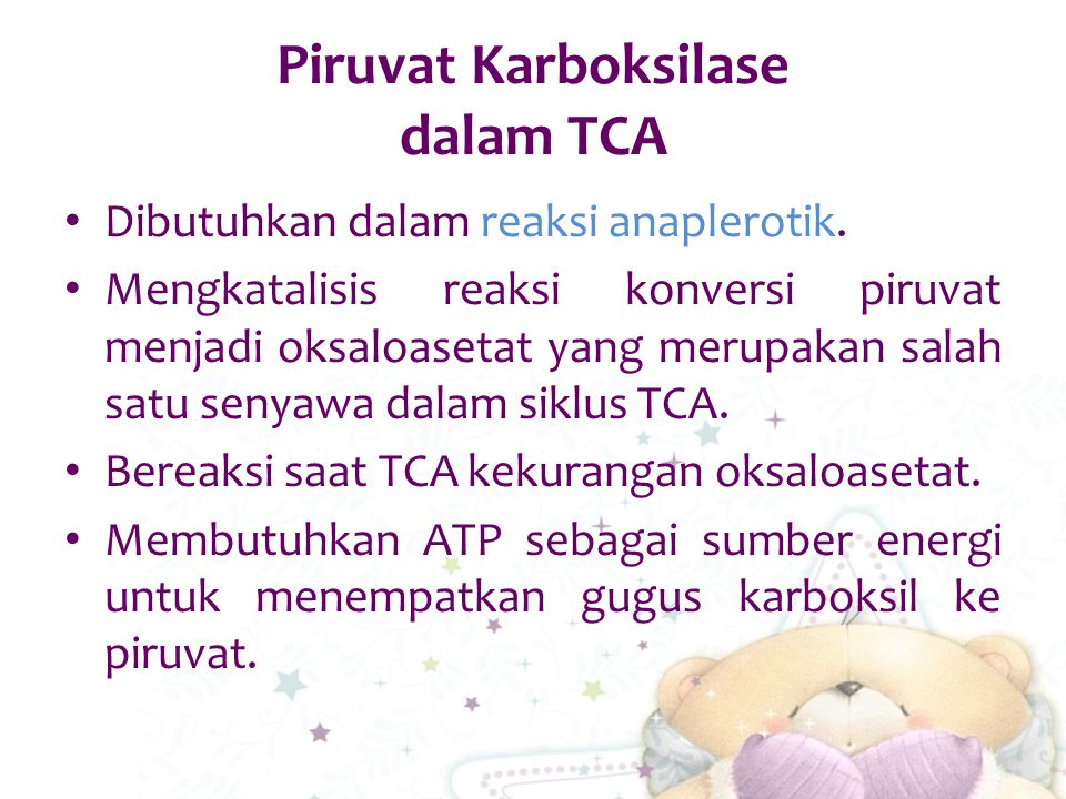 Piruvat Karboksilase dalam TCA