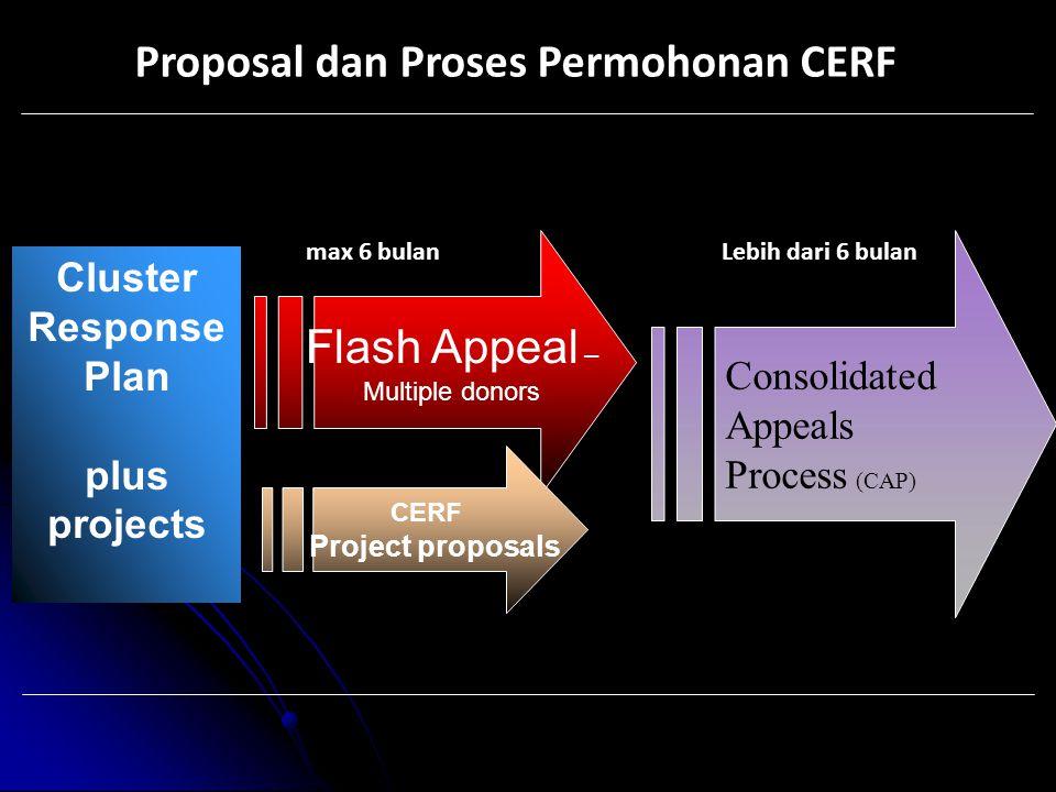 Proposal dan Proses Permohonan CERF
