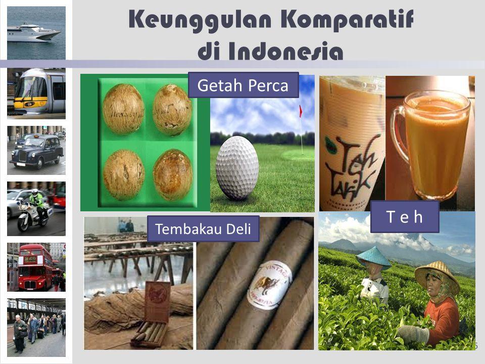 Keunggulan Komparatif di Indonesia