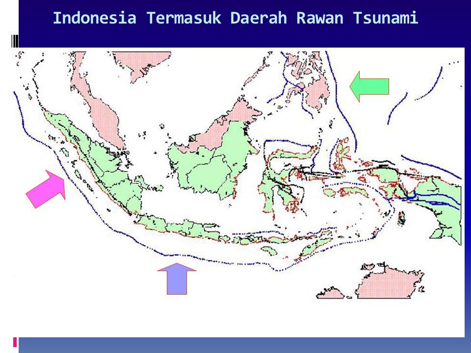 Indonesia Termasuk Daerah Rawan Tsunami