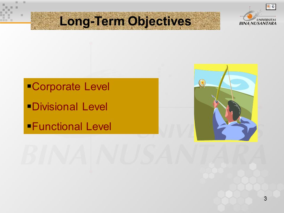 Long-Term Objectives Corporate Level Divisional Level Functional Level