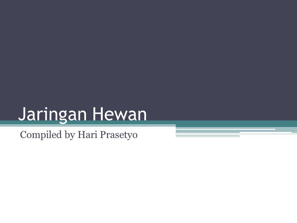 Compiled by Hari Prasetyo