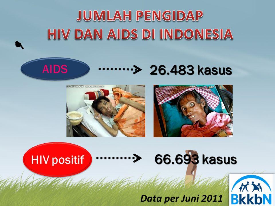 JUMLAH PENGIDAP HIV DAN AIDS DI INDONESIA