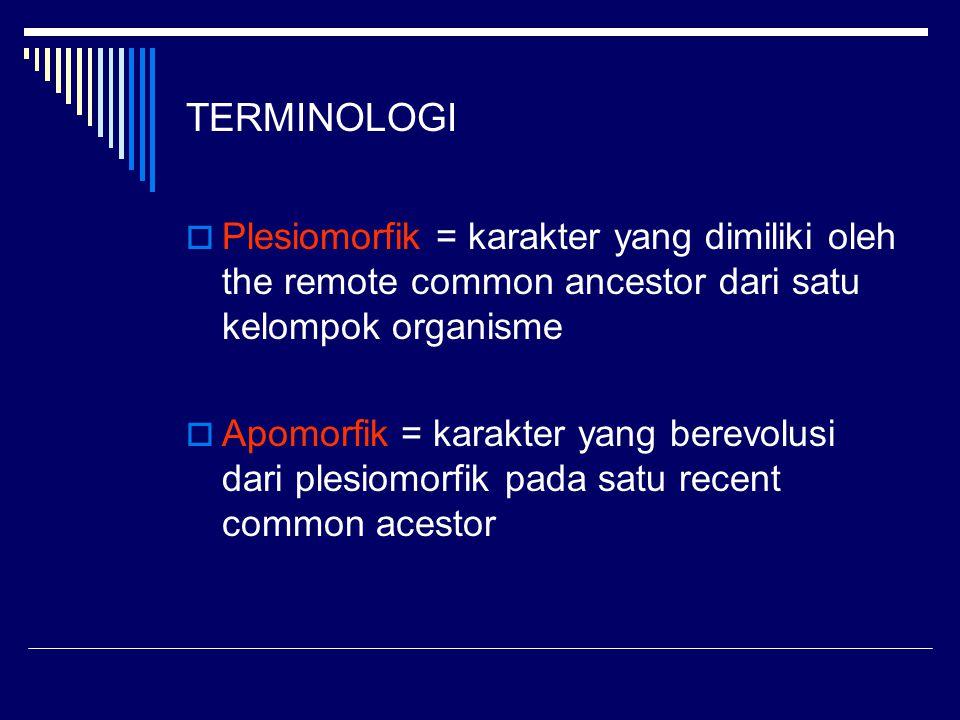 TERMINOLOGI Plesiomorfik = karakter yang dimiliki oleh the remote common ancestor dari satu kelompok organisme.