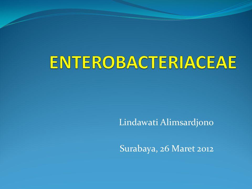 Lindawati Alimsardjono Surabaya, 26 Maret 2012