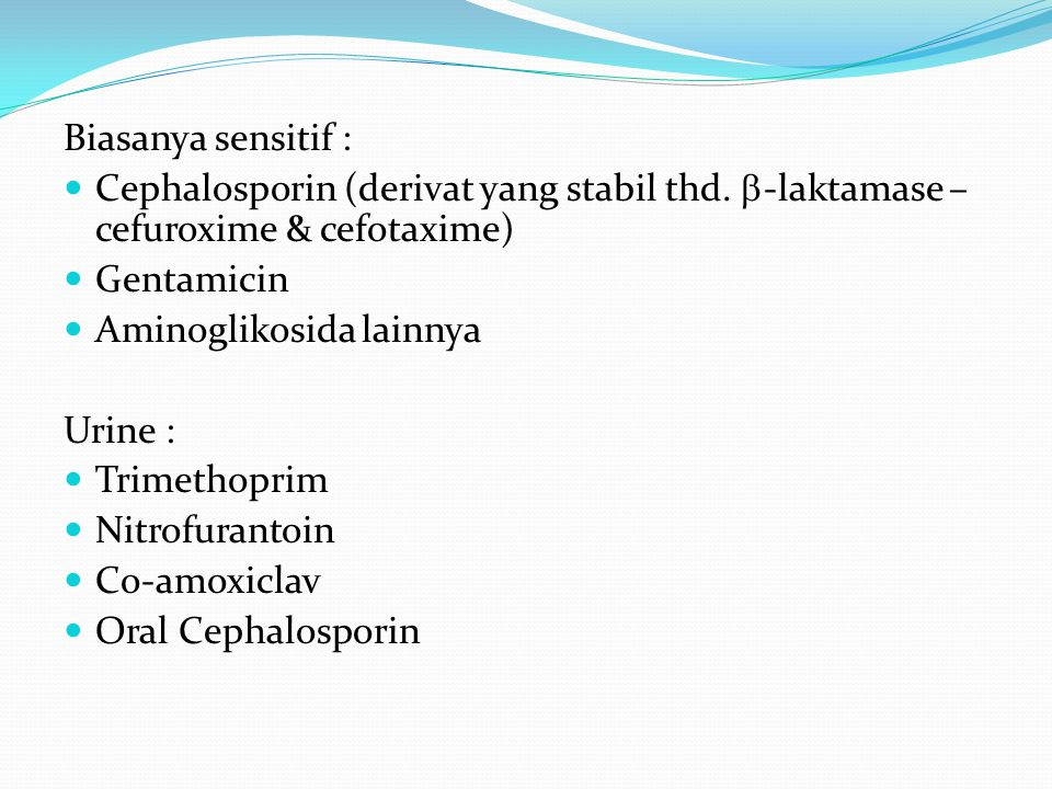Biasanya sensitif : Cephalosporin (derivat yang stabil thd. -laktamase – cefuroxime & cefotaxime) Gentamicin.