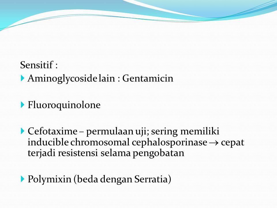 Sensitif : Aminoglycoside lain : Gentamicin. Fluoroquinolone.
