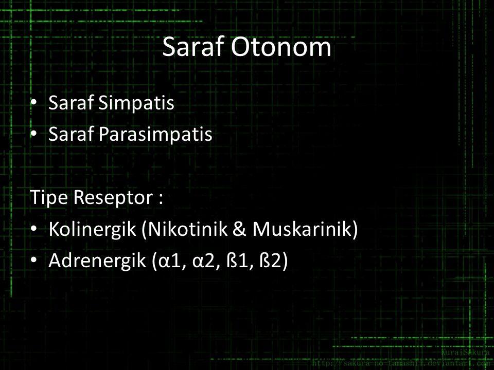 Saraf Otonom Saraf Simpatis Saraf Parasimpatis Tipe Reseptor :